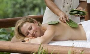 li-final-cactus-massage